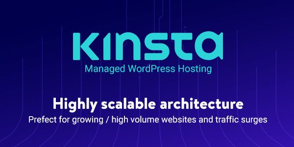 Kinsta - Managed WordPress Hosting for SMEs