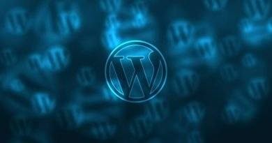 Understanding why some WordPress plugins can slow down your website